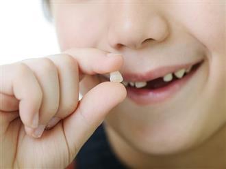 Khi trẻ bị gãy răng vĩnh viễn, đừng vội vứt đi, việc đơn giản này có thể giúp nối lại răng