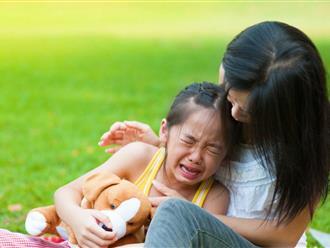 Minh chứng cho thấy cáu giận tốt cho trẻ hơn cha mẹ nghĩ, vì thế cứ để mặc cảm xúc của trẻ đi