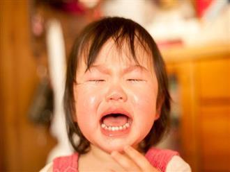 Nếu phát hiện con có 7 dấu hiệu sau chứng tỏ cha mẹ cần cho trẻ hoạt động ngoài trời nhiều hơn nữa
