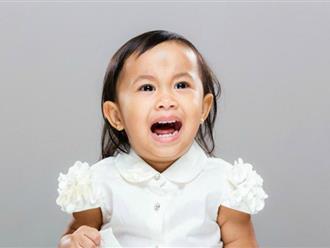Nếu thấy con có những thói quen này cha mẹ hãy chỉnh đốn ngay vì đó chính là nguyên nhân khiến trẻ chậm phát triển