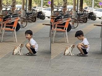 Ngày nào con trai cũng đi học về muộn, bố mẹ tò mò tìm hiểu thì bất ngờ với cảnh tượng trên đường phố