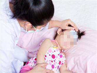 Phòng và điều trị bệnh viêm não Nhật Bản
