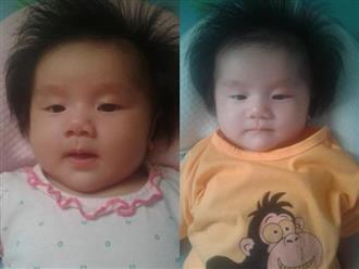 """""""Rụng tim"""" trước bé gái 3 tháng tuổi có mái tóc bông xù như chú sư tử nhỏ"""
