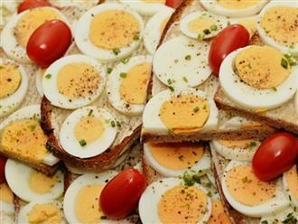 Tại sao nên ăn trứng khi mang thai?