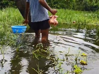Thanh niên mang con gà mới làm sạch xong ra ao nước nhúng xuống và kéo lên phát hiện xung quanh bám toàn thứ này
