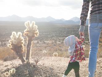 Thư mẹ đơn thân gửi con trai vừa tròn 6 tuổi: Sau này con hãy là người đàn ông có trách nhiệm