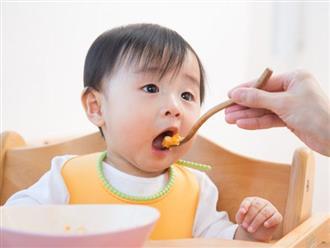 Trẻ 8 tháng tuổi ăn được những gì - Mẹ cần biết để xây dựng thực đơn ăn dặm cho con