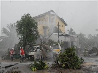 Bão số 8 liên tục tăng cấp trong 3 ngày tới, cách quần đảo Hoàng Sa khoảng 770km