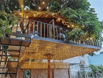 Ngỡ ngàng với 'căn nhà trên cây' độc nhất vô nhị ở Hà Nội, chi phí trên trăm triệu đồng