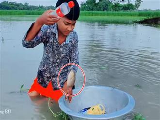 Thả vô số chai nhựa rỗng xuống sông, cậu bé thu được một mẻ lớn sau khi gom chúng ngược lại bờ