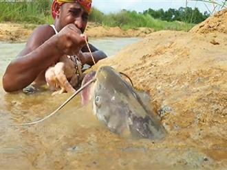 Ngư dân GAN TO BẰNG TRỜI đại chiến cùng QUÁI NGƯ nặng gần 40kg sau khi thả một con gà sống xuống ao