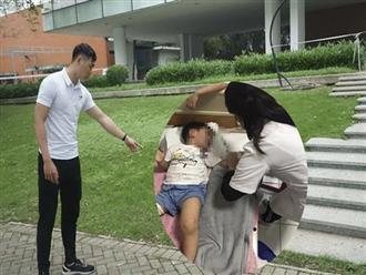 Hà Nội: Đi công viên chơi, bé trai bị chó thả rông cắn rách đùi