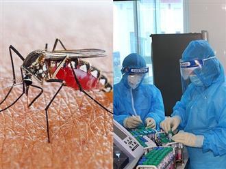 Covid-19 chưa qua, Hà Tĩnh đã xuất hiện ổ dịch sốt xuất huyết với 8 ca mắc được ghi nhận