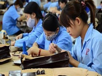 Đến năm 2035, lao động nữ làm việc đến 60 tuổi mới nghỉ hưu