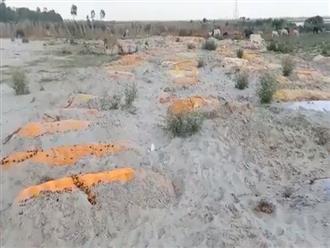 Kỳ án sông Hằng: Ấn Độ lại tìm thấy hàng trăm tử thi bị chôn vùi dưới cát ven bờ, bị chó hoang cắn xé sau vụ nhiều thi thể Covid-19 trôi sông