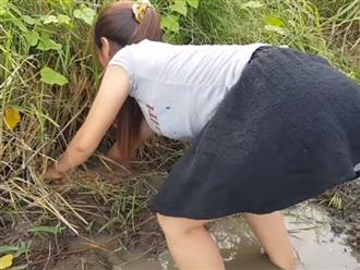 Tiên nữ váy ngắn mò cua bắt cá ngoài ruộng lúa, động tác 'cúi xuống' lại khiến dân tình 'nóng mắt'