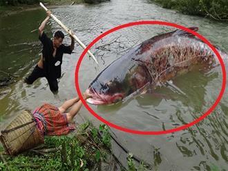 Đang ngủ bên bờ sông, cô gái 'THẤT KINH HỒN VÍA' vì bị 'thủy quái' kéo chân, may mà người chồng về giải vây kịp lúc