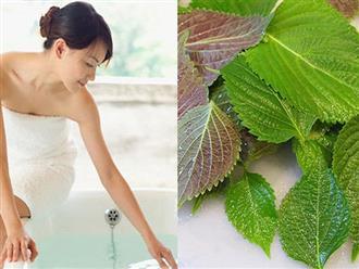 Những loại lá rẻ tiền mẹ nên tắm sau khi sinh em bé, vừa giúp cơ thể thơm tho lại có thể phòng chống viêm nhiễm