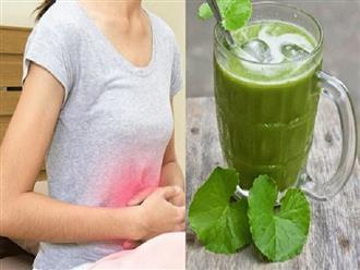 Những việc mẹ bầu cần lưu ý khi ăn rau má để không gây hại đến sức khỏe của mẹ, tổn hại đến con