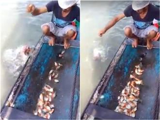 'MẮT TRÒN MẮT DẸT' trước cách người đàn ông bắt loài 'cá ăn thịt người' chỉ bằng một miếng thịt nhỏ xíu