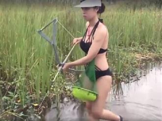 Gái xinh lội bùn dùng kích bắt cá, điều đáng chú ý là đôi chân dài trắng nõn của cô nàng mới là điểm nhấn