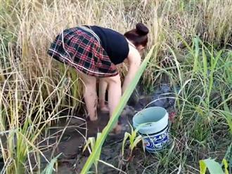 Mặc đồ 'KIỆM VẢI' ra ruộng bắt cá, gái xinh khiến dân làng 'câm nín' khi thấy cô khoe trọn thứ này