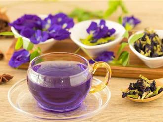 Sai lầm nguy hiểm bậc nhất khi pha trà hoa đậu biếc biến thức uống ngon lành này trở nên độc hại hoặc mất dinh dưỡng
