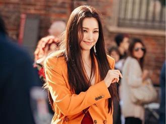 Body Shaming không chừa một ai: Honey Lee từng khốn đốn 15 năm trước, nguyên cớ lại đến từ dàn Hoa hậu Hàn Quốc