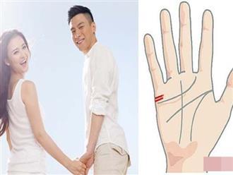 4 đặc điểm bàn tay của người có hôn nhân hạnh phúc, viên mãn