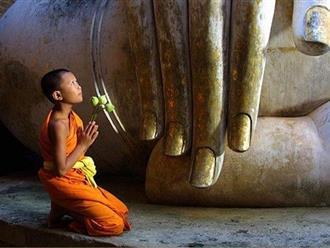 Nạo phá thai điều gì sẽ xảy ra với cuộc đời của chính bạn theo nhà Phật hãy dành 1 phút đọc ngay