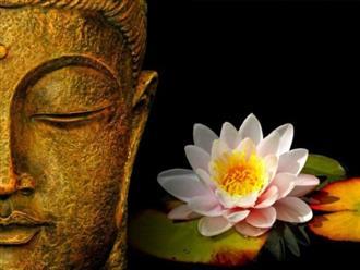 4 quy tắc 'vàng' trong triết lý nhà Phật giúp bạn an nhiên tự tại, ung dung hưởng phúc