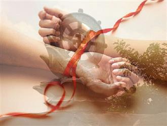 Phật dạy: Yêu mà làm cho nhau đau khổ thì không phải tình yêu đích thực