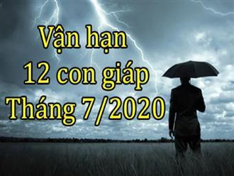 Vận hạn của 12 con giáp trong tháng 7/2020