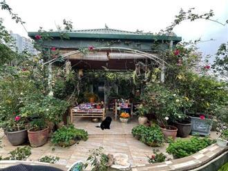 Độc đáo 'vườn địa đàng trên mây', nơi gia chủ vui sống 'điền viên' ngay giữa lòng Hà Nội