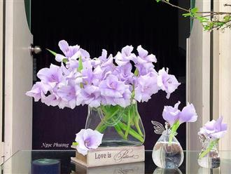Học 'lỏm' cách cắm và dưỡng hoa lay ơn 11 ngày không tàn của cô giáo Hà Nội
