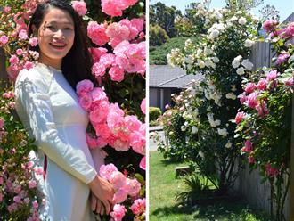 Khu vườn 'đồng không mông quạnh' bỗng chốc thành 'ngôi nhà hoa hồng' với hơn 50 loại hoa khoe sắc 4 mùa