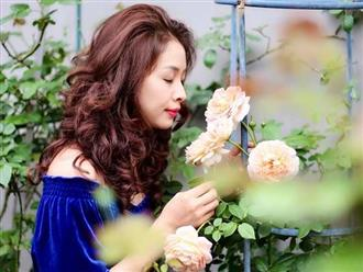 Hô biến vườn nhà thành 'biệt phủ hoa hồng' đẹp như tranh với bí quyết từ 'mẹ đảm' Hà Giang