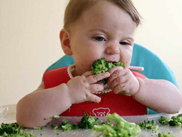 5 thực phẩm tốt nhất dành cho bé tập ăn dặm chỉ huy