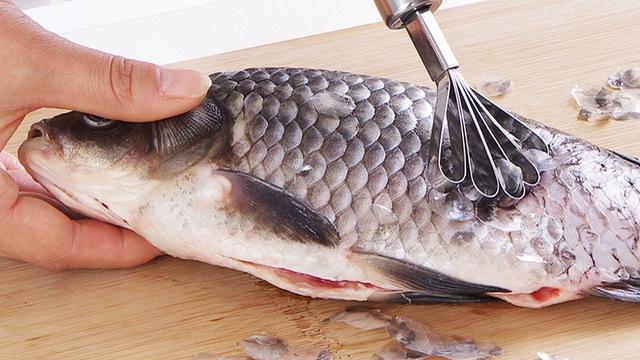 Một bộ phận của cá được cho là 'thần dược' sức khỏe, nhưng 99% bị vứt đi - Ảnh 1