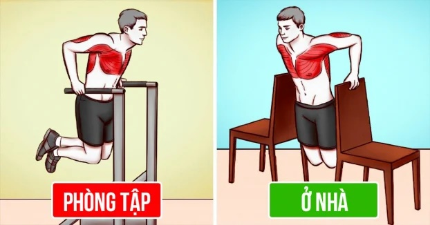 6 bài tập tại nhà hiệu quả không kém ở phòng gym - Ảnh 1