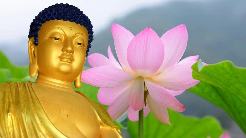 Lời Phật dạy thấm thía về lòng chung thủy và đạo lý vợ chồng - Ảnh 1