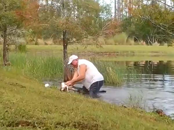 Người đàn ông dùng hai tay không cạy miệng cá sấu để cứu chó cưng thoát chết ngoạn mục