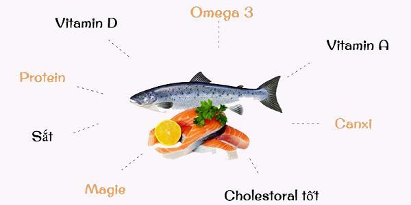 Sai lầm khi nghĩ trẻ ăn não cá thông minh, chuyên gia cảnh báo nguy cơ suy giảm trí tuệ - Ảnh 1
