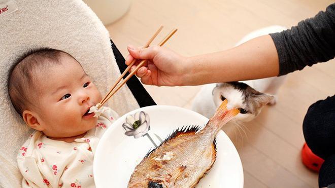 Sai lầm khi nghĩ trẻ ăn não cá thông minh, chuyên gia cảnh báo nguy cơ suy giảm trí tuệ - Ảnh 3