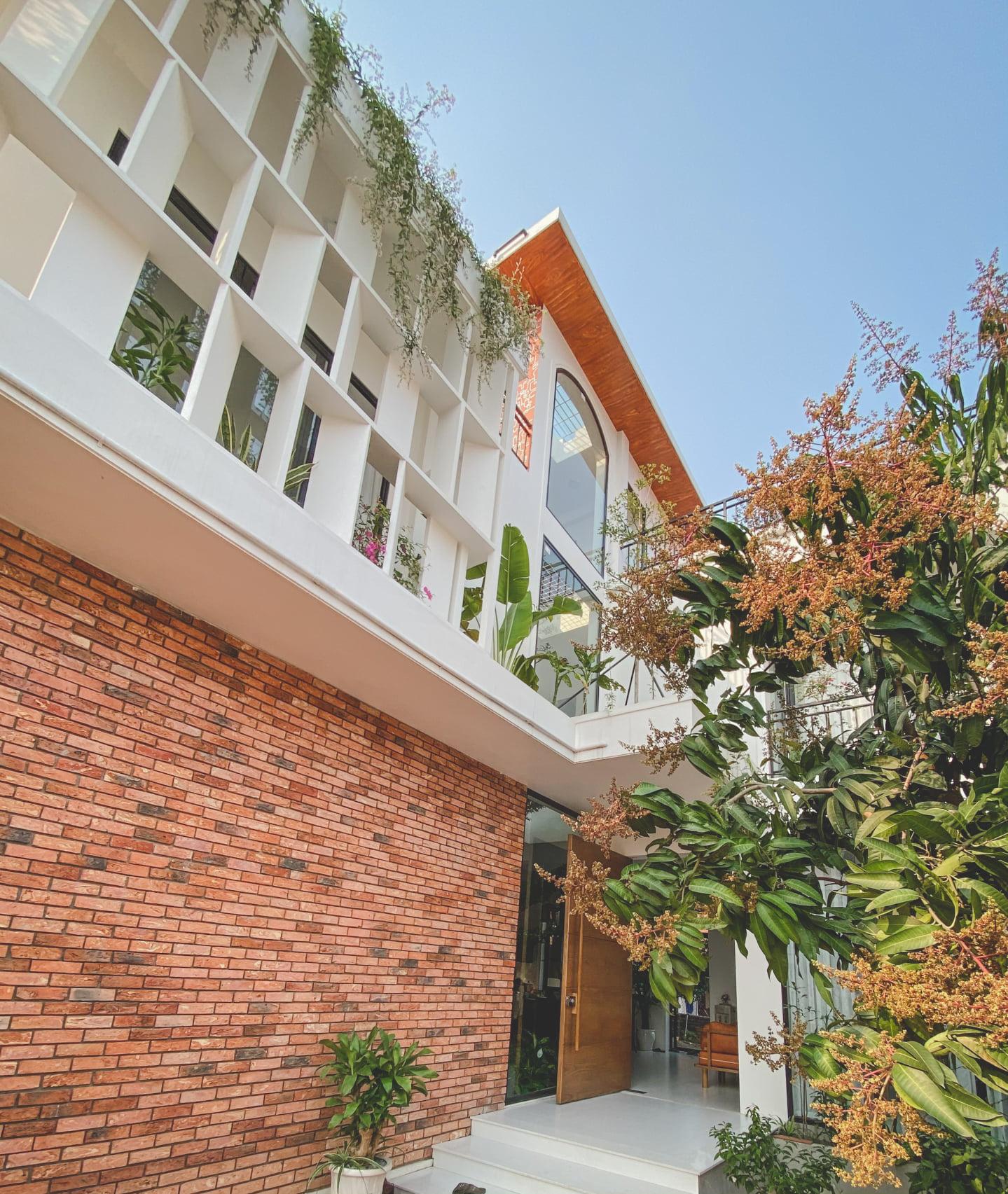 Ngôi nhà đẹp tựa 'nàng thơ' được 'bảo bọc' bởi thiên nhiên xanh ngắt giữa làng cổ Đường Lâm - Ảnh 3