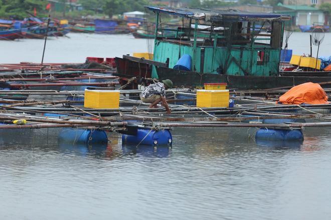 Bão số 8: Sóng cao 5m đang đánh vào bờ biển Nghệ An, hàng trăm khối đất đá sạt lở, đổ xuống quốc lộ - Ảnh 13