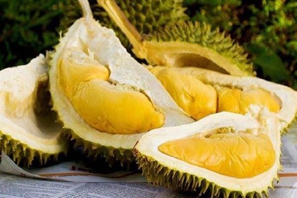 5 nhóm người tuyệt đối không nên ăn sầu riêng - Ảnh 1