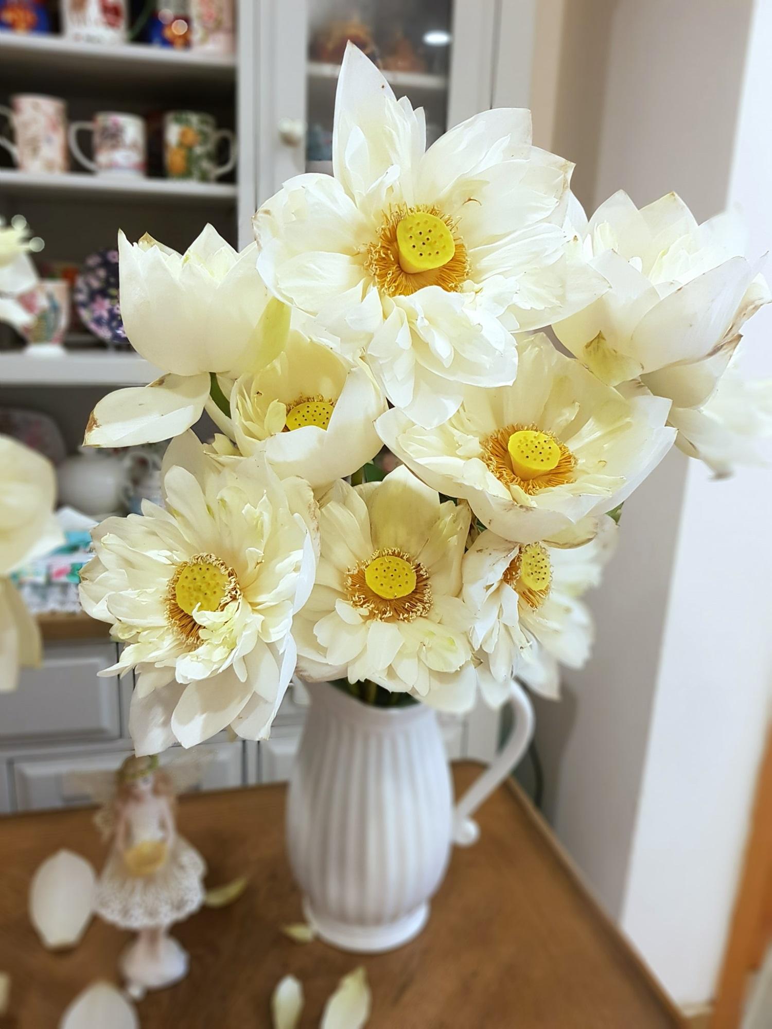 Cô gái Hà Nội tung bí kíp 'níu giữ' vẻ đẹp bạch liên hoa trọn vẹn trong 3 ngày, nhìn bình sen nở rộ mà u mê con mắt - Ảnh 7