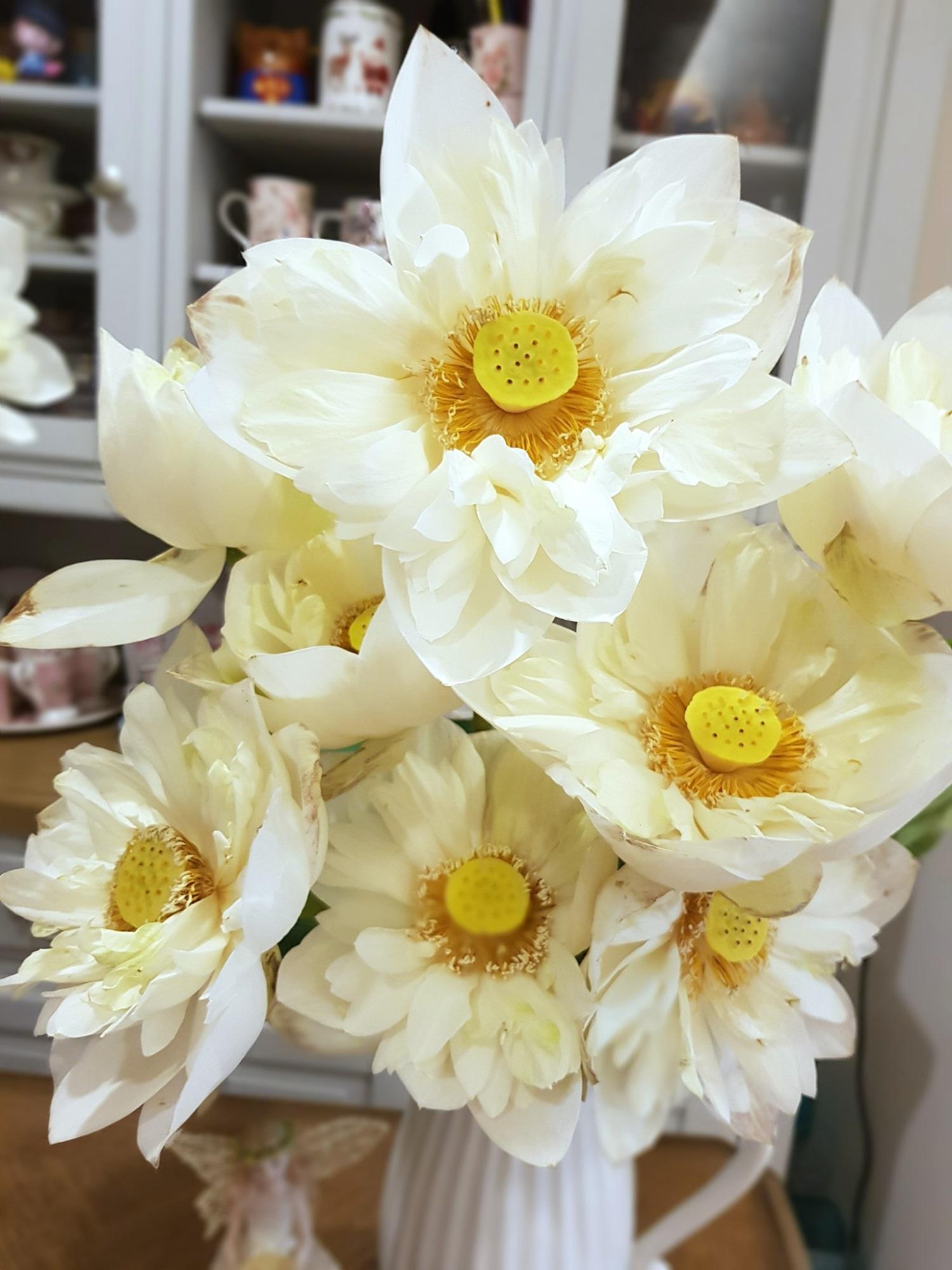 Cô gái Hà Nội tung bí kíp 'níu giữ' vẻ đẹp bạch liên hoa trọn vẹn trong 3 ngày, nhìn bình sen nở rộ mà u mê con mắt - Ảnh 5