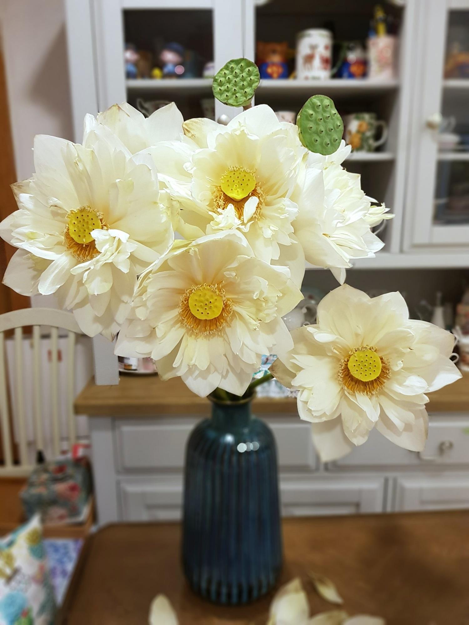 Cô gái Hà Nội tung bí kíp 'níu giữ' vẻ đẹp bạch liên hoa trọn vẹn trong 3 ngày, nhìn bình sen nở rộ mà u mê con mắt - Ảnh 6